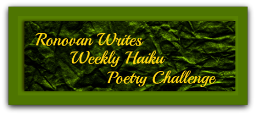 Ronowan Writes Haiku