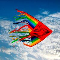 Fly Like A Kite
